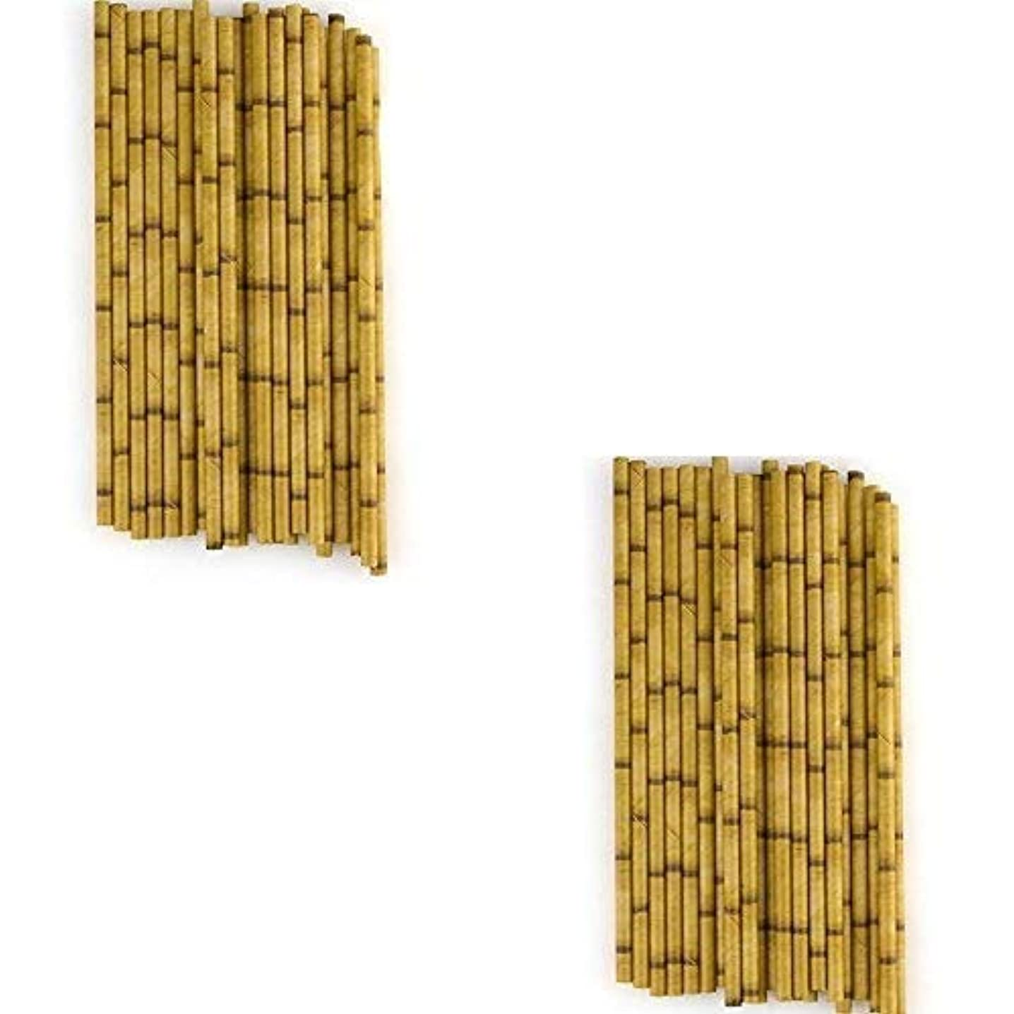 Bamboo Paper Straws (48 Pack) 7 3/4