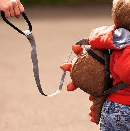 LittleLife Toddler Daysack Safety Rein