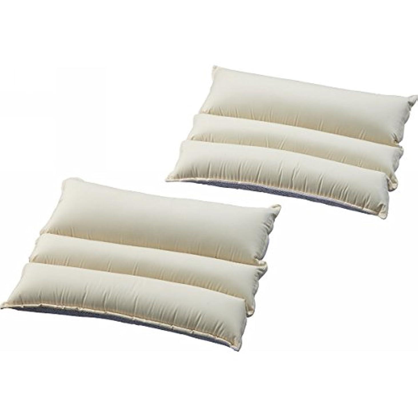 担保尊厳打撃アストロ パイプ枕 2個 ホワイト 高さ調整可能 331-23
