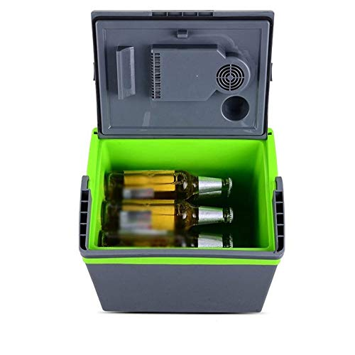 SMLZV Eléctrica más Fresca y más for el Coche y el hogar de 25 litros de Doble 220V AC y 12V DC Casa Tapones de vehículos
