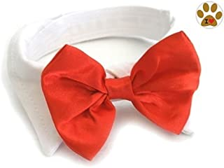 DOGGIE DESIGN Red Satin Formal Bow Tie and Collar with Button Pin- Dog Sizes XS Thru 3XL