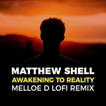 Awakening to Reality (Melloe D LoFi Remix)
