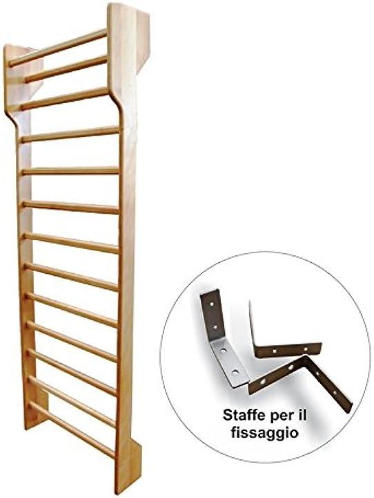 Scala spalliera svedese in faggio per ginnastica a 1 campata cm 250x90, smontata - spalliere smontate in kit GS0129-sm
