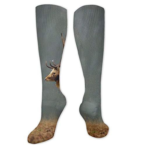Calcetines de poliéster y algodón por encima de la rodilla, retro, unisex, para muslos, cosplay, botas largas, para deportes, gimnasio, yoga, alce, animales, naturaleza, paisajes, árboles, campos