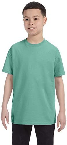 Hanes Big Boy's Ultimate ComfortSoft Tagless T-Shirt