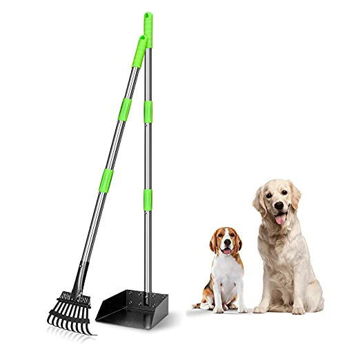 TOOGE Pooper Scooper, Dog Pooper Scooper Long Handle Stainless Metal Tray and Rake Set for Medium Small Dogs Heavy Duty (Green)
