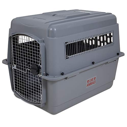 Petmate Navigator Pet Carrier with Antimicrobial Protection,
