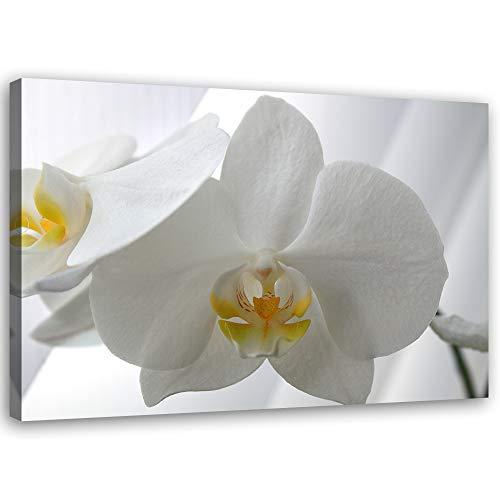 Feeby Leinwandbild XXL Orchidee Wandbild Kunst Pflanze Weiß 120x80 cm