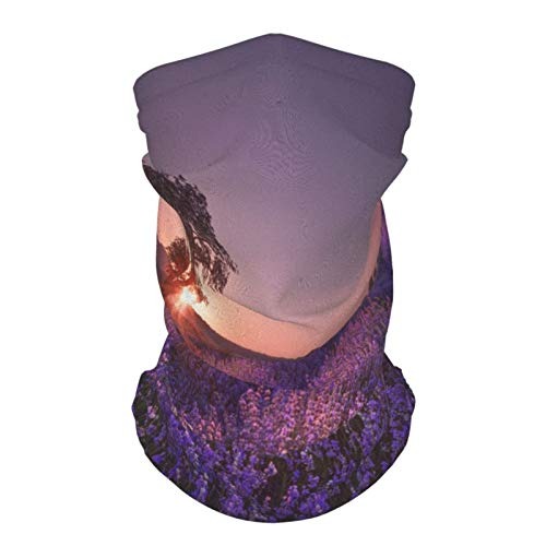 Magnificent Lavender Field Face Mask Banada Multifunctional Seamless UV Protection Headwear for Men&Women