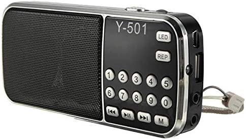 Y-501 Mini Portable LCD Digital FM AUX Radio Speaker TF Disk Super-cheap Overseas parallel import regular item USB