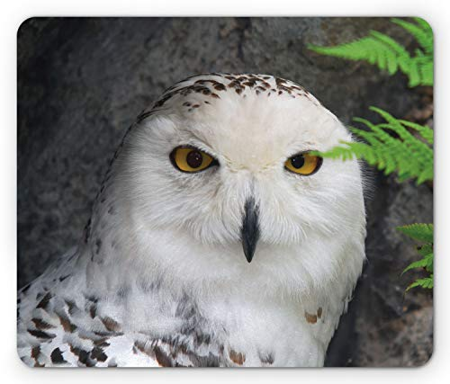 Ambesonne Wizard Mouse Pad, Pattern White Owl Themed Animal Green Leaves Amber Eyes Gift Witchcraft Print, Rectangle Non-Slip Rubber Mousepad, Standard Size, Black White