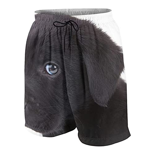 SUHOM De Los Hombres Casual Pantalones Cortos,Lindo Cachorro Labrador Retriever Negro Mirando a la cámara,Secado Rápido Traje de Baño Playa Ropa de Deporte con Forro de Malla
