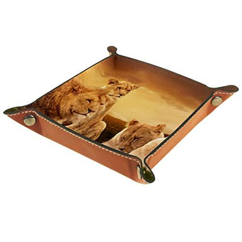 Bandeja de Cuero - Organizador - Foto de león africano - Práctica Caja de Almacenamiento para Carteras,Relojes,llaves,Monedas,Teléfonos Celulares y Equipos de Oficina