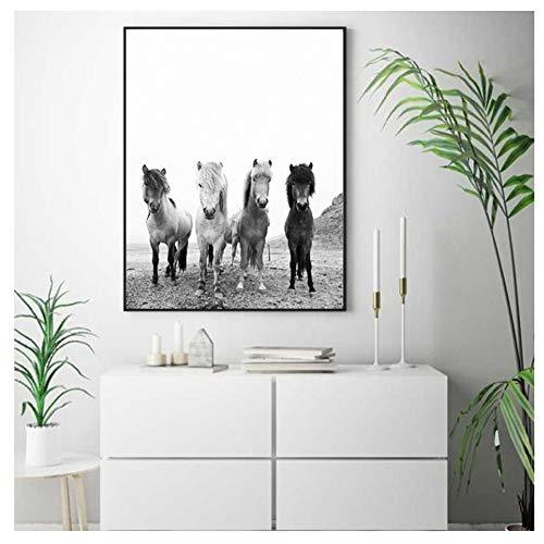 Bos dieren paarden Art Canvas schilderij muur foto zwart-wit IJsland wilde paarden Art Prints-40x60cm-geen frame