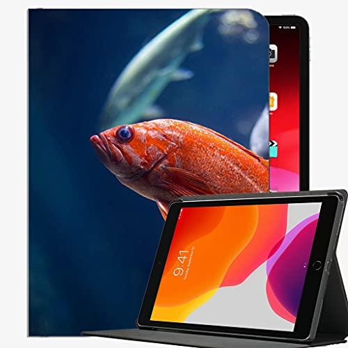para 2019 iPad Air 3 10.5 / 2017 iPad Pro 10.5 Pulgada Funda, Funda de cáscara Delgada de la Caja del Mundo subacuática de Pescado para iPad Pro 10.5 Pulgadas
