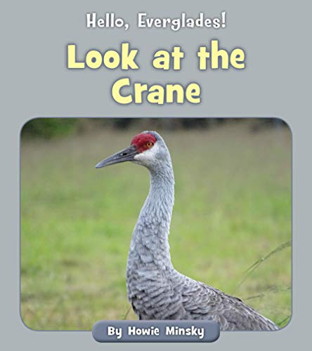 Look at the Crane (Hello, Everglades!) (English Edition)