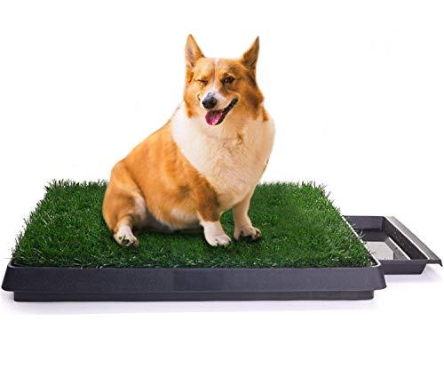 Sailnovo Inodoro para Mascotas Perro Césped Interior Orinal Perro Almohadilla de Entrenamiento de Hierba para Animal Doméstico(63 x 50 x 7 cm)