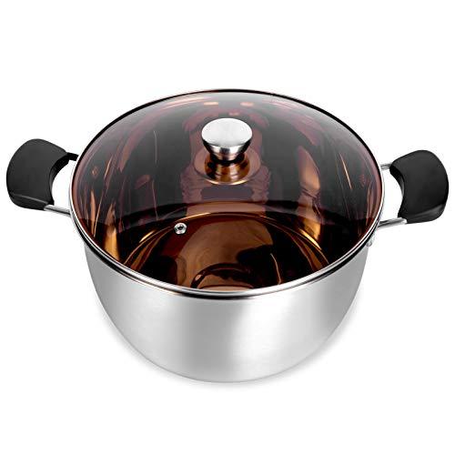 WEZVIX Stainless Steel Stock Pot, 6 Quart Cooking Pot with Lid, Heat-Proof Double Handles, Silver