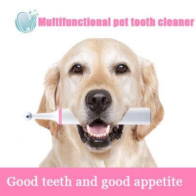 WHL.HH Verhindern Schlechter Atem Haustier Elektrisch Zahnbürste 360 ° drehbarer Bürstenkopf Hund Zähne Poliermaschine Einfach zu säubern Oral Pflege Werkzeuge, mit 4 Bürstenköpfe,Rosa