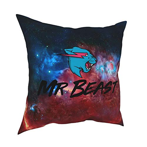 Ynjgqeo Mr Beast Throw Pillow Covers for Sofa Couch Pillowcase Bedroom Car Home Soft Travel Square Gifts 16' X16
