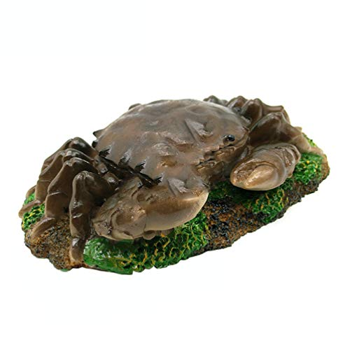 bismarckbeer Décoration en résine pour Aquarium Motif Crabe