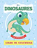 Gros Dinosaures Livre De Coloriage Pour Enfants 2-5 Ans: Triceratops, Diplodocus, tyrannosaure et beaucoup plus. Mon Premier Coloriage pour bébé 12 ... les filles et les garçons (French Edition)