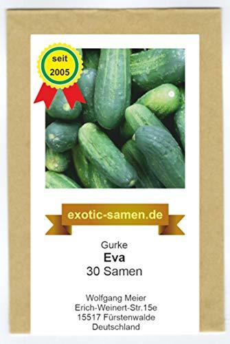 Gurke - Eva - 30 Samen