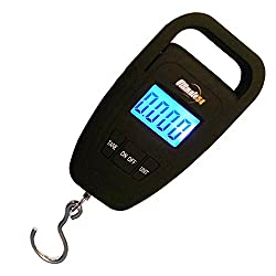 Top 10 Best Selling Fishing Scales Reviews 2021