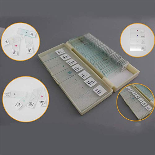 25/50 Stuk Microscoop Bio-Slice Set Specimen Specimen Microscoop Slide