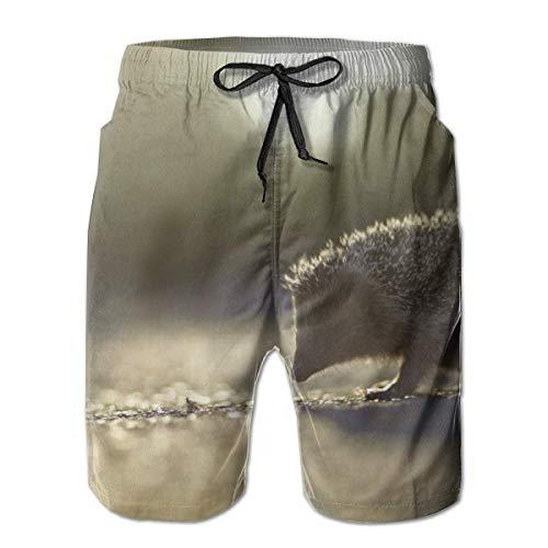 OMNHGFUG Pantalones cortos de playa para hombre, erizo casual, ajuste clásico, con cordón, pantalones cortos elásticos de verano con bolsillos