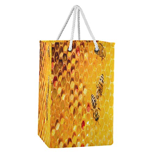 Rxyy - Cesto plegable de tela de nailon con asas de algodón extendidas para ropa y juguetes