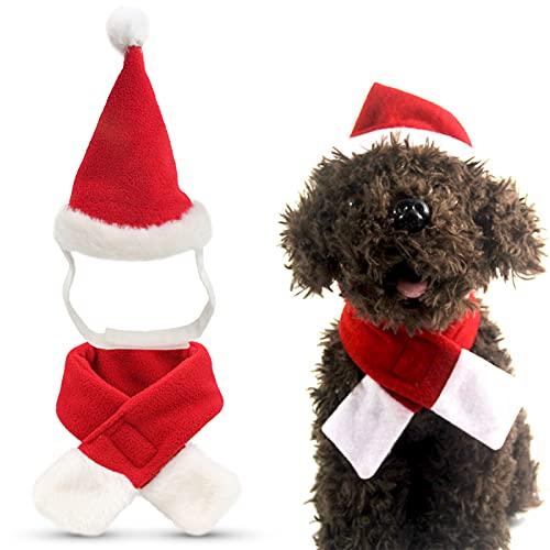 Gatti Cappello da Babbo Natale Cappello da compagnia natalizio Cani Costume per cani Cappello natalizio Costume natalizio per gatti e cuccioli Per cani di taglia piccola media e grande Gatto 2 pezzi