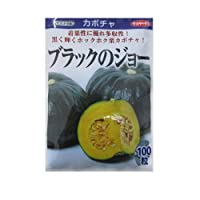 サカタ交配 ブラックのジョー サカタのタネの大玉カボチャ品種です。