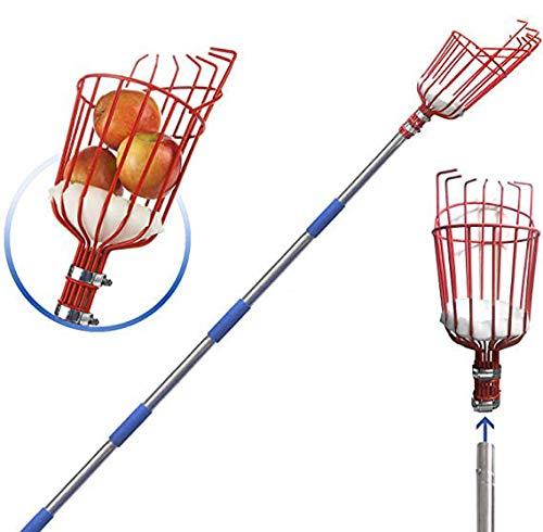 Soumn - Recogedor de fruta con cesta, 10 piezas de acero inoxidable ligero para plantar manzanas, cerezas y árboles frutales (10 unidades)