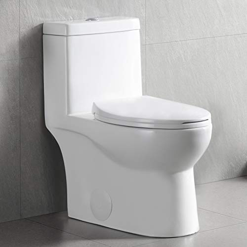 DeerValley DV-1F52816 White Ceramic Standard Comfort Height Elongated Dual Flush One Piece Toilet with Soft Closing and Quick Release Toilet Seat