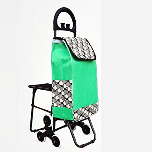 RSWLY Carro de Compras portátil de la Carretilla Aplacables Mayores con la Silla Que Sube Las escaleras Carro de la Compra (Color : Green)