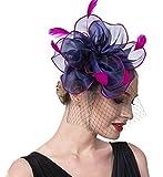 Fascinators Hat for Women Tea Party Headband Girls Flapper Headpiece Kentucky Derby Wedding (FM02-Navy and Rose)