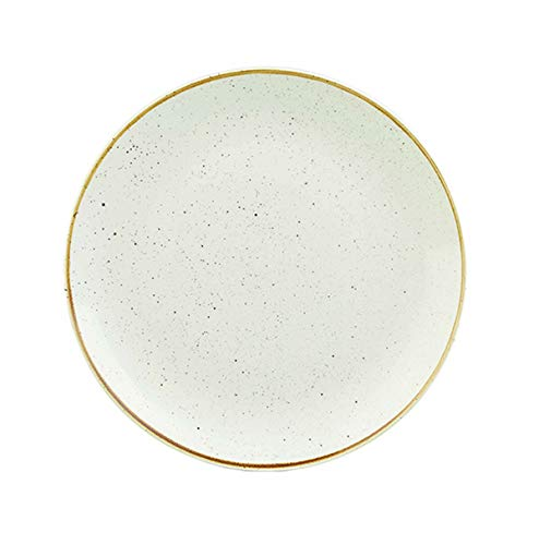 Visiodirect Lot de 12 Assiettes Plates stonecast Ivoire - 26 cm