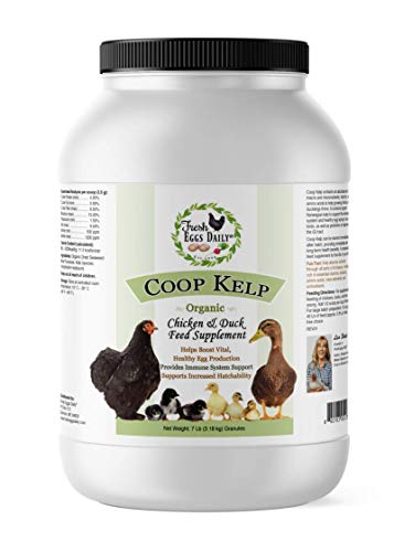 Fresh Eggs Daily Coop Kelp Organic Chicken and Duck Feed Supplement 7LB