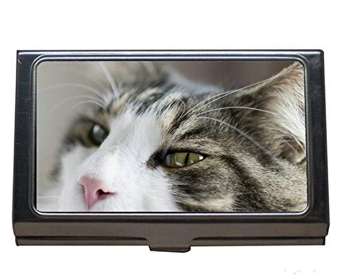Soporte de tarjeta de visita de acero inoxidable, maletín de tarjeta de visita de gato macro para hombres y mujeres