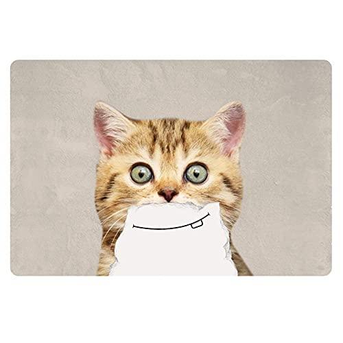 Felpudo moderno con diseño de gato de dibujos animados impreso piso de bienvenida alfombrillas antideslizantes para zapatos pequeños en el interior de la alfombra duradera