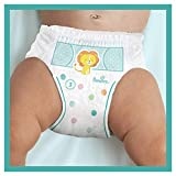 Pampers Baby-Dry Pants, Gr. 3, 6-11kg, Monatsbox, 1er Pack (1 x 24 Stück) - 4