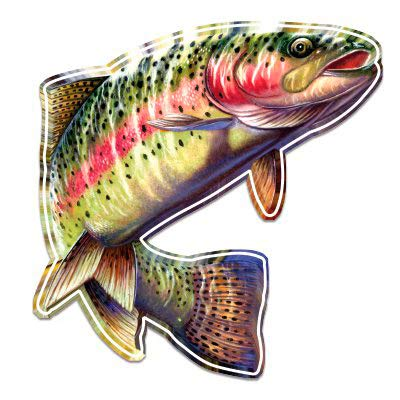 "GT Graphics Rainbow Trout Beautiful Full Color - 12"" Vinyl Sticker Waterproof Decal"