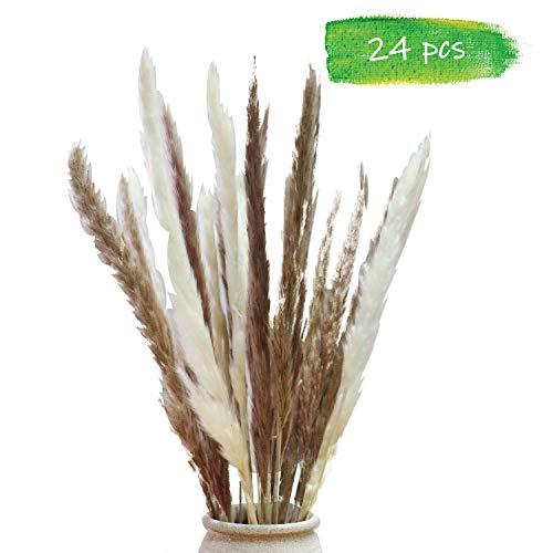 Weekend&Lifecan pampasgras deko, pampasgras getrocknet, pampasgras getrocknet groß, pampasgras künstlich, trockenblumen deko, 55cm pampasgras X 24Pcs