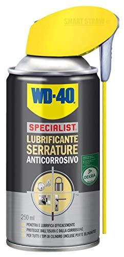 WD-40 Specialist Lubrificante Serrature Spray Anticorrosivo con Sistema Doppia Posizione, 250 ml