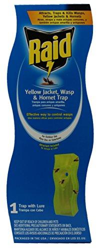 Raid Wasp and Yellow Jacket Swing Trap