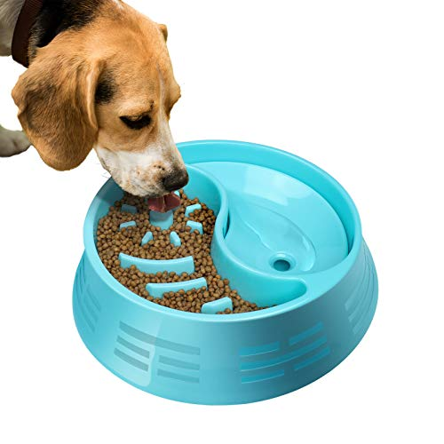 Slow Feeder Dog Bowl with Water Bowl,Dog Bowl Food and Water Bowls for Dogs,Maze Dog Bowl,Pet Bowl Blue for Small Medium Large Dog