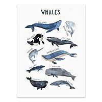 Xuetaozz 水彩ホエールプリント保育園の壁アートキャンバス絵画サメのポスタービーチ航海の壁の絵の装飾キッズルームの壁の装飾-40x60cm額装なし