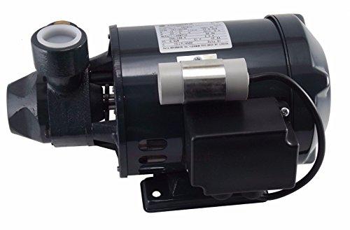 LOWARA P Pompa periferica PM16/A 0,3KW / 0,4HP 1x220-240V 50HZ