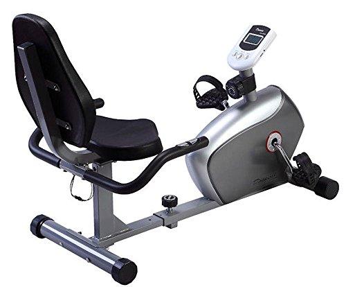 ダイコー(DAIKOU) フィットネスバイク マグネット式 手動8段階負荷 リカンベントバイク 家庭用 DK-8304R 【保証期間1年】